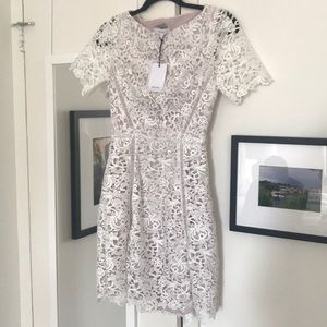 Reiss Dresses - Reiss Elania-Lace Fit & Flare Dress, off white ash